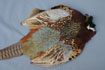 Pheasant Pelt W/Wings and Tail Grade #1